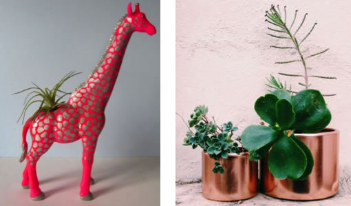 EverBloom planters: Giraffe and copper pots