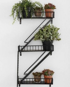 Plants on fire escape rack