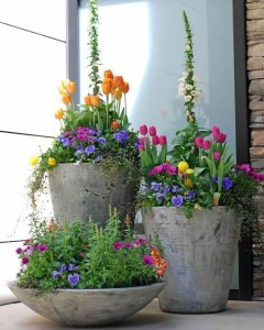 Spring mixed planters